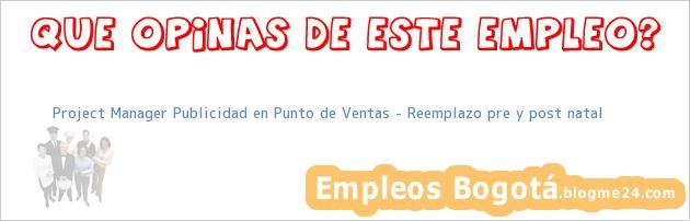 Project Manager Publicidad en Punto de Ventas – Reemplazo pre y post natal