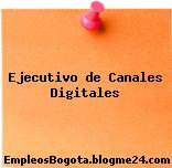 Ejecutivo de Canales Digitales