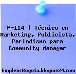 P-114 | Técnico en Marketing, Publicista, Periodismo para Community Manager