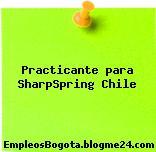 Practicante para SharpSpring Chile