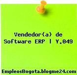 Vendedor(a) de Software ERP | Y.049