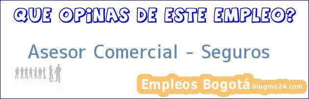 Asesor Comercial /Seguros