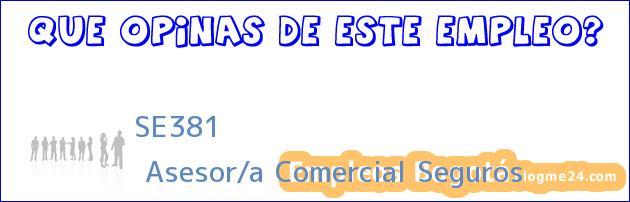 SE381 | Asesor/a Comercial Seguros