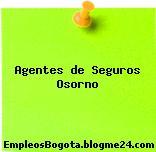 Agentes de Seguros Osorno