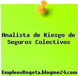 Analista de Riesgo de Seguros Colectivos