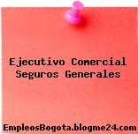 Ejecutivo Comercial Seguros Generales