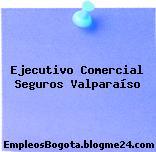 Ejecutivo Comercial Seguros Valparaíso