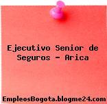 Ejecutivo Senior de Seguros – Arica