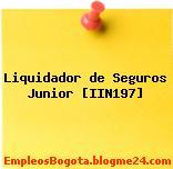 Liquidador de Seguros Junior [IIN197]