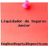 Liquidador de Seguros Junior
