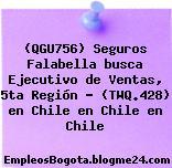 (QGU756) Seguros Falabella busca Ejecutivo de Ventas, 5ta Región – (TWQ.428) en Chile en Chile en Chile