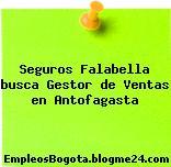 Seguros Falabella busca Gestor de Ventas en Antofagasta