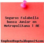 Seguros Falabella busca Junior en Metropolitana | AE