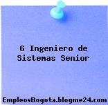 6 Ingeniero de Sistemas Senior