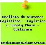 Analista de Sistemas Logísticos – Logística y Supply Chain – Quilicura