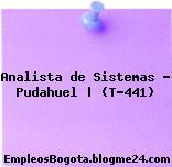 Analista de Sistemas – Pudahuel | (T-441)