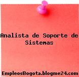 Analista de Soporte de Sistemas