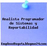 Analista Programador de Sistemas y Reportabilidad