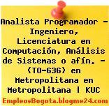 Analista Programador – Ingeniero, Licenciatura en Computación, Análisis de Sistemas o afín. – (TO-636) en Metropolitana en Metropolitana | KUC