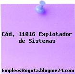 Cód. 11016 Explotador de Sistemas