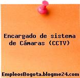 Encargado de sistema de Cámaras (CCTV)
