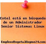 Entel está en búsqueda de un Administrador Senior Sistemas Linux