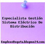 Especialista Gestión Sistema Eléctrico De Distribución