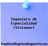 Ingeniero de Especialidad (Sistemas)