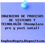 INGENIERO DE PROCESOS DE SISTEMAS Y TECNOLOGÍA (Reemplazo pre y post natal)