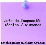 Jefe de Inspección Técnica / Sistemas