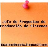 Jefe de Proyectos de Producción de Sistemas