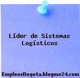 Líder de Sistemas Logísticos