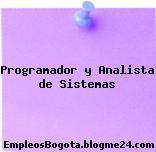 Programador y Analista de Sistemas
