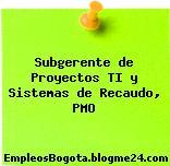 Subgerente de Proyectos TI y Sistemas de Recaudo, PMO