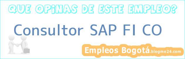 Consultor SAP FI CO