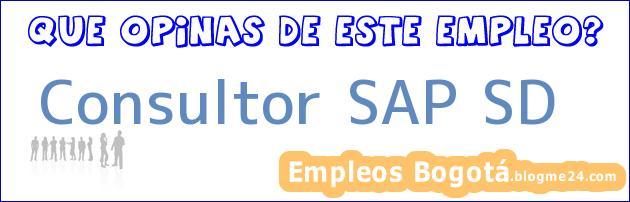 Consultor SAP SD