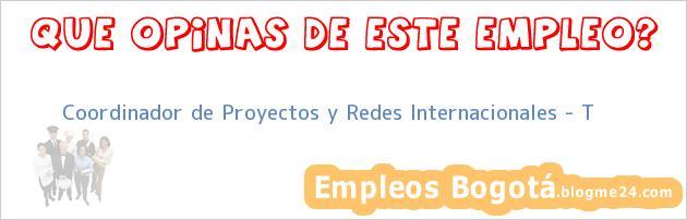 Coordinador de Proyectos y Redes Internacionales – T