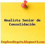 Analista Senior de Consolidación