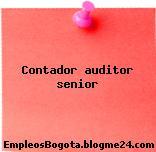 Contador auditor senior