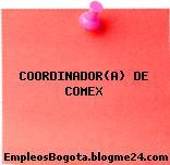 COORDINADOR(A) DE COMEX