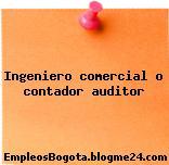 Ingeniero comercial o contador auditor