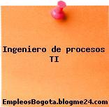 Ingeniero de procesos TI