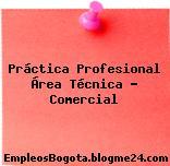 Práctica Profesional Área Técnica – Comercial