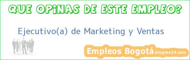 Ejecutivo(a) de Marketing y Ventas