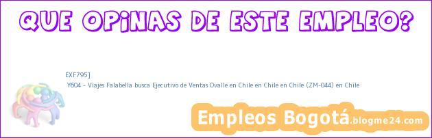 EXF795] | Y604 – Viajes Falabella busca Ejecutivo de Ventas Ovalle en Chile en Chile en Chile (ZM-044) en Chile
