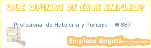 Profesional de Hoteleria y Turismo – W.887