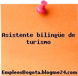 Asistente bilingüe de turismo