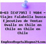 B-63 [EXF795] | Y604 – Viajes Falabella busca Ejecutivo de Ventas Ovalle en Chile en Chile en Chile en Chile