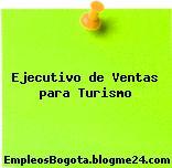 Ejecutivo de Ventas para Turismo