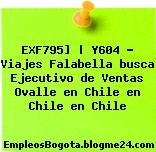 EXF795] | Y604 – Viajes Falabella busca Ejecutivo de Ventas Ovalle en Chile en Chile en Chile